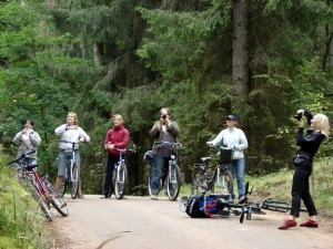 dviraciu-zygis-mk-0743